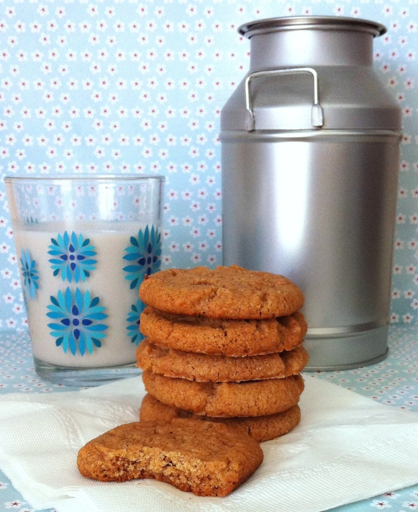 Gluten Free Flourless Almond Butter Cookies