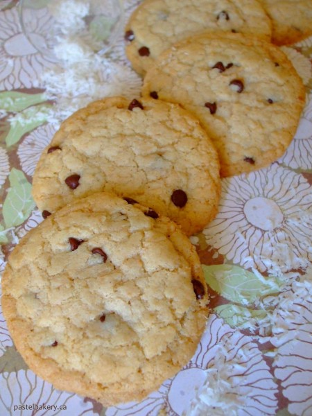 Gluten Free Dairy Free Coconut Chocolate Chip Cookies